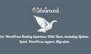 siteground experience