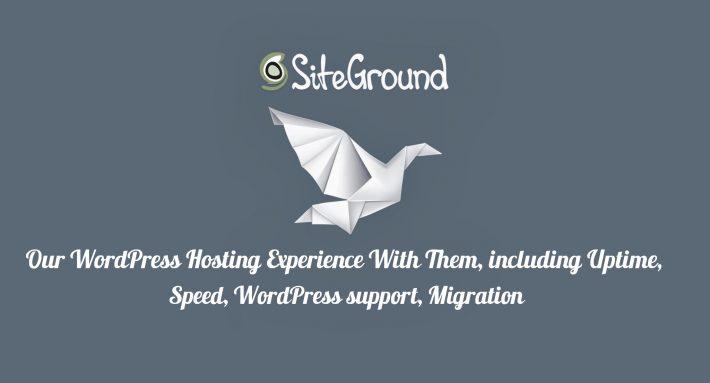 siteground experience